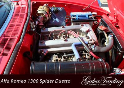 Alfa-Romeo-1300-Spider-Duetto-Rundheck-Osso-di-Sepia-9