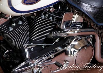 Harley-Davidson FLSTS H.S.201506128044