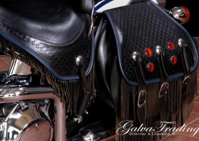 Harley-Davidson FLSTS H.S.201506128045