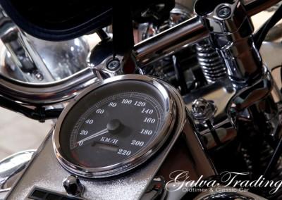 Harley-Davidson FLSTS H.S.201506128048